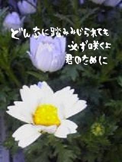 e85f3a43_candyheartt.jpg