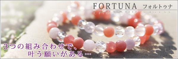 600_br-fort6-banar.jpg
