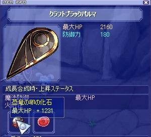 20071113_2.jpg