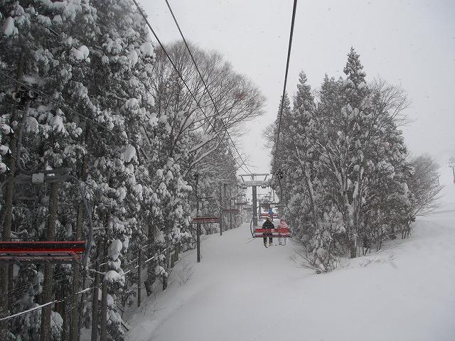 20110117-2.jpg