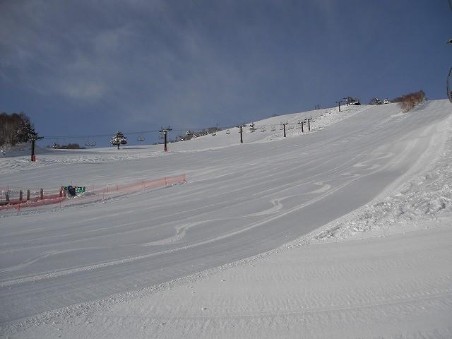 20110214-3.jpg