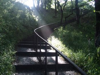 公園の天使の梯子1