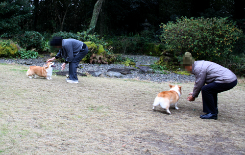 2011-0104お爺ちゃん達と