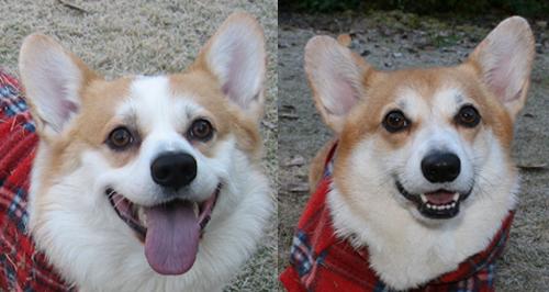 2011ハニーとリッチの笑顔