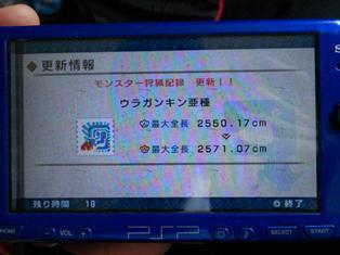DSCN0511.jpg