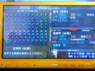 DSCN2394.jpg
