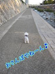 IMG_3606.jpg