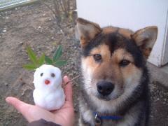 雪だるまさんと♪ 2007.11.19