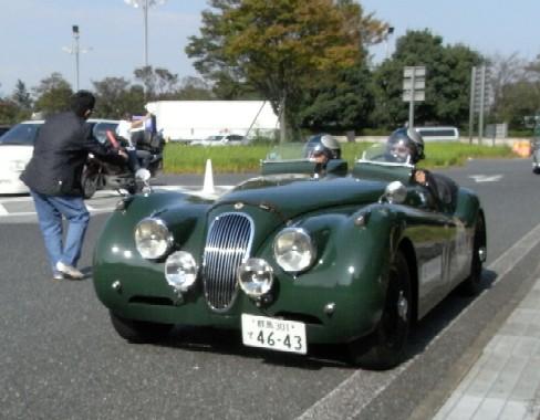 LF2011063.jpg