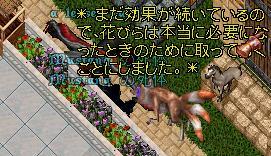 UO(110625-214422-00).jpg