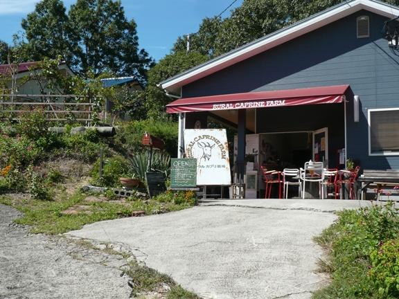 店の中で食べる場所は無いけど、あちこちに屋根つきのベンチがあります