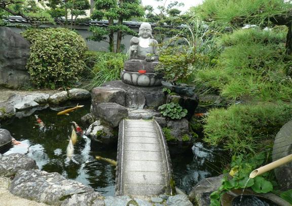 88か所のお寺に居る鯉って、みんな丸々してて立派&人懐こい。