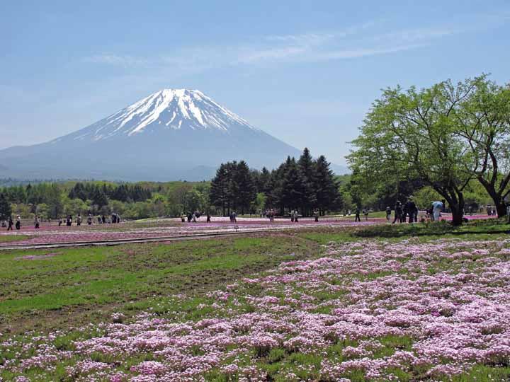 11motosu_ko_10.jpg
