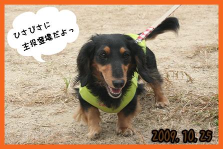 2009 10 25 鶴見緑地l公園 blog01のコピー