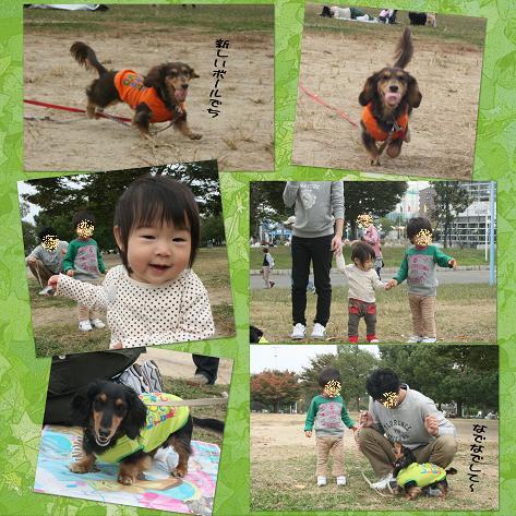 20091025鶴見緑地blog01