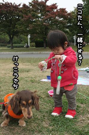 2009 10 25 鶴見緑地l公園 blog08のコピー