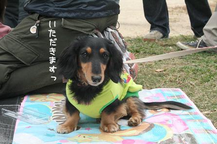 2009 10 25 鶴見緑地l公園 blog03のコピー