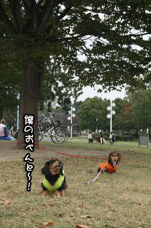 2009 10 25 鶴見緑地l公園 blog02のコピー