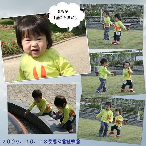 20091018長居公園植物園blog01