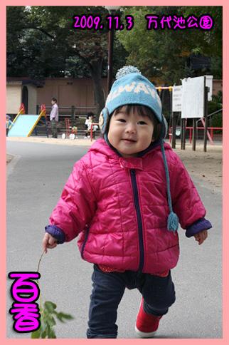 2009 11 03 大泉緑地公園 blog02のコピー