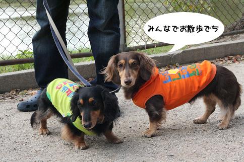 2009 11 03 大泉緑地公園 blog04のコピー