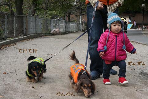 2009 11 03 大泉緑地公園 blog05のコピー