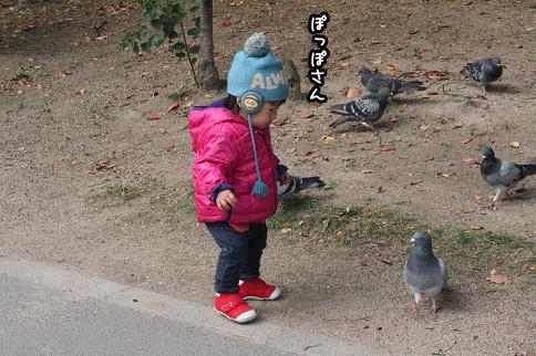 2009 11 03 大泉緑地公園 blog07のコピー