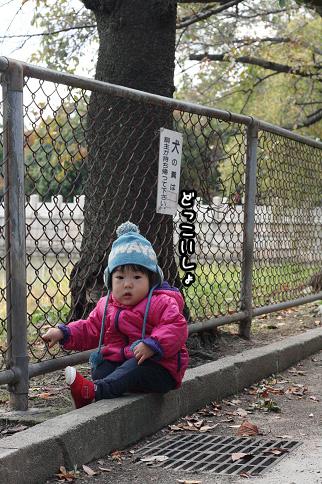 2009 11 03 大泉緑地公園 blog09のコピー