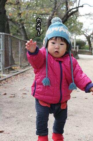 2009 11 03 大泉緑地公園 blog10のコピー