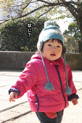 2009 11 03 大泉緑地公園 blog06のコピー