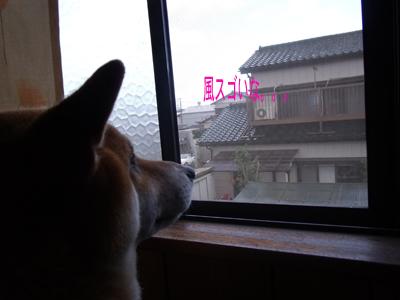 taifuu0910081.jpg