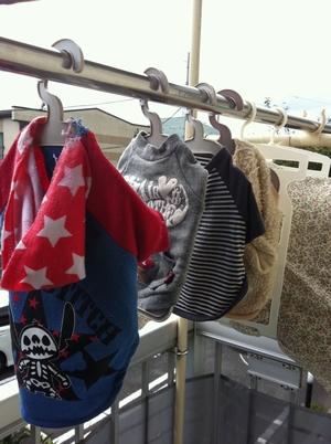 ルークの洋服洗濯