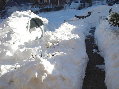 NY.Dec.2010 041