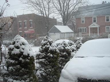 NY.Dec.2010 039