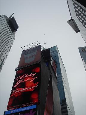NY.Dec.2010 059