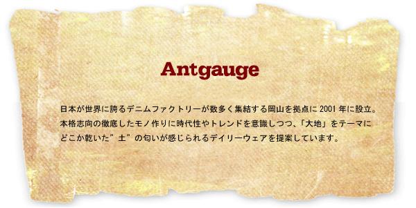 antgauge_ttl.jpg