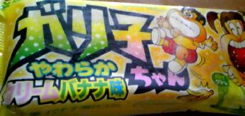 20090925z.jpg