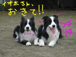 20071109230645.jpg