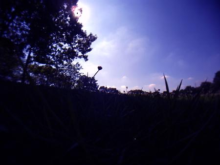 20110717v30.jpg