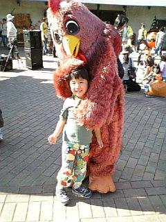 みつせ鶏さん、こわい。。。