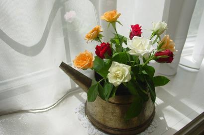 室内のバラ1
