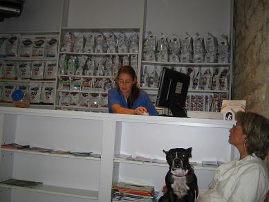 パリ動物病院受付