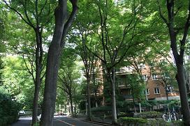広尾ガーデンヒルズ3