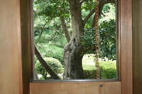 猪股邸窓から2小