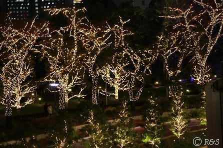 東京MTの光2