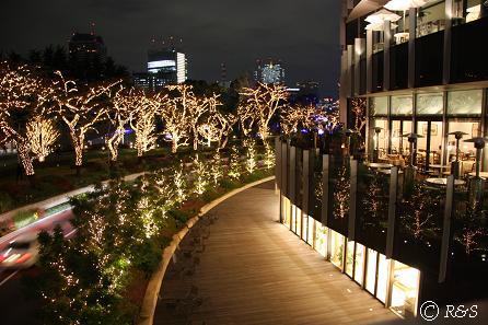 東京MTの光1