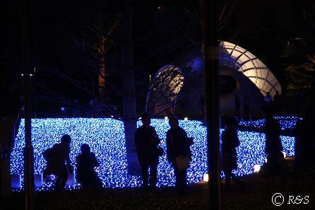 東京MTの光4