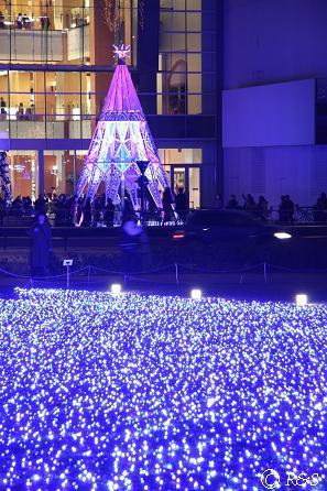 東京MTの光8