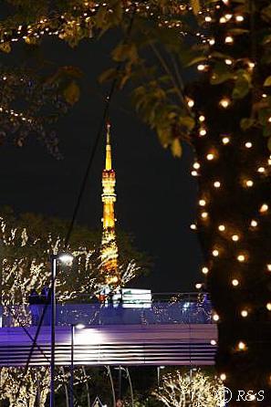 東京MTの光0