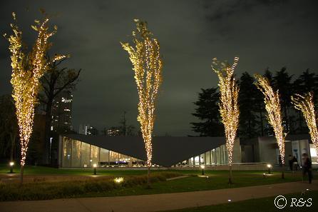 東京MTの光3